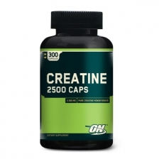 ON Creatine 2500 mg 300 caps