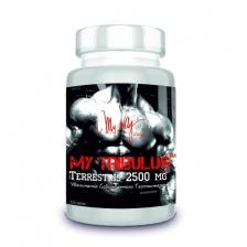 MY WAY™ in Sport TRIBULUS Terrestris 2500 mg 120tab