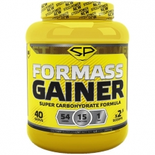 Steel Power For Mass Gainer 3000 g