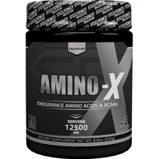 Steel Power Amino-X 250 g