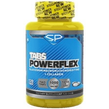 Steel Power PowerFlex 120 tab