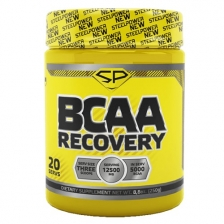 Steel Power BCAA RECOVERY 250 g