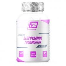 2SN Glucosamine + Chondroitin + MSM  600 mg 100 caps