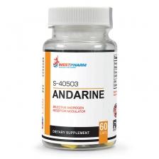WestPharm Andarine (S-40503) 60 caps