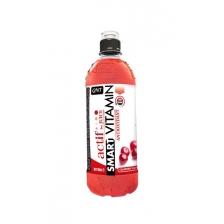 QNT Smart Vitamin 700 ml 1шт